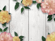 Mother`s Day Border. Flower Border for Mother`s Day Stock Photos