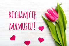 Mother`s day card with Polish words: Dzien Matki - Mother`s Day. Stock Photos