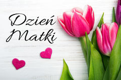 Mother`s day card with Polish words: Dzien Matki - Mother`s Day Royalty Free Stock Photo