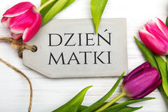 Mother`s day card with Polish words: Dzien Matki - Mother`s Day Royalty Free Stock Photography