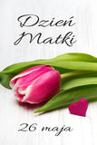 Mother`s day card with Polish words: Dzien Matki - Mother`s Day. Royalty Free Stock Photo