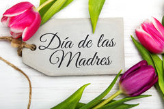 Mother`s day card with Spanish words: Happy Mother`s day, Stock Photo