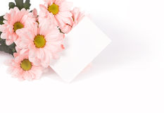 Mother's Day Concept Stock Images