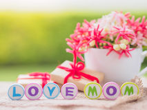 Mother`s day concept. Royalty Free Stock Photos
