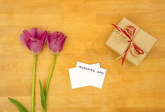 Mother`s Day concept Stock Images