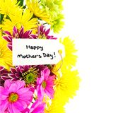 Mother's Day flower border Stock Image