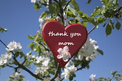 Free Mother`s Day Greetings With A Red Wooden Heart Stock Photos - 181606813