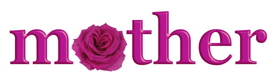 Mother`s Day Special Pink Rose banner Stock Photos