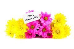 Mother's Day tag with flowers Royalty Free Stock Photos