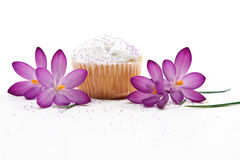 Mother's Day Treat. Of A Cupcake And Spring Flowers Stock Image