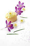 Mother's Day Treat Of A Cupcake. And Spring Flowers Stock Photos