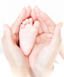 Mother's hands carefully keep baby's foot Royalty Free Stock Photos