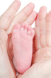 Mother's hands holding baby's feet Royalty Free Stock Images
