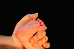 Mother's love. A hand of a mother holding a foot of a new born baby showing her love Stock Image