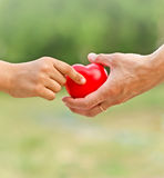 Mother's love in the hand, on the palm. All the love given to child Royalty Free Stock Photo