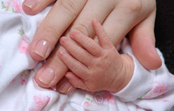 A Mother's Touch Stock Photography