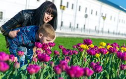 Mother show a bed of flowers to his son in the park. Happiness in family life. Mother holds her son, that he dont fell Stock Photography