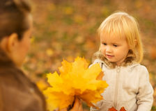 Mother showing baby fallen leaves. Mother showing baby girl  fallen leaves Stock Image