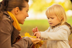 Mother showing baby fallen leaves and chestnuts Stock Image