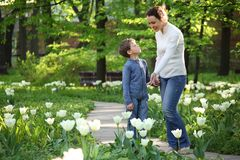 Mother shows to son blossoming white tulips Stock Photos