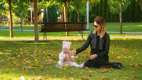 Mother sits with his lovely cute infant daughter on autumn lawn in pictorial city park with trees and fallen yellow leaves. Young mother sits with his lovely stock video
