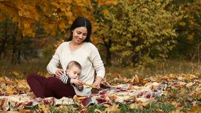 Mother with son in autumn park stock video