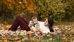 Mother with son in autumn park stock footage