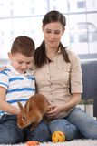 Mother and son with bunny pet. Young mother and cute son enjoying playing with bunny pet a home Stock Image