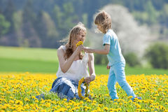 Mother and son in dandelion field Royalty Free Stock Image