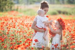 Mother, son and daughter in a field of red poppies stock photography