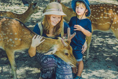 Mother and son feeding beautiful deer from hands in a tropical Zoo royalty free stock image