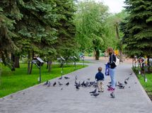 Mother and son feeding pigeons in the Park stock photos