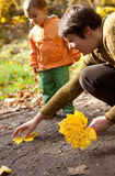 Mother and son gathering yellow leaves Royalty Free Stock Image