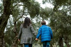 Mother and son holding hands walking in a park. In autumn royalty free stock photo
