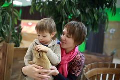 Mother with son holding rabbit. Mother with her son holding rabbit in a contact zoo stock image