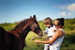 Mother and son with horse Stock Photography