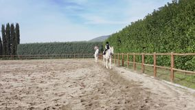 Woman and her son doing horseback riding.