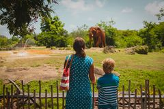 Mother and son looking at elephants in zoo. Family learning animals royalty free stock photography