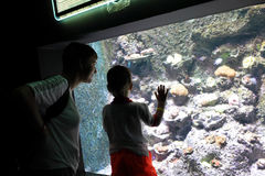 Mother with son looking at tropical fishes Stock Photo