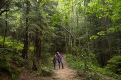 Mother and son in the mystic green foggy forest royalty free stock photography
