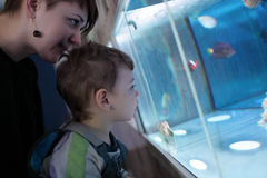 Mother with son at oceanarium Royalty Free Stock Photography