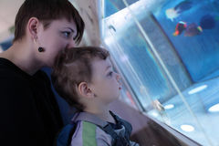 Mother and son at oceanarium Stock Images