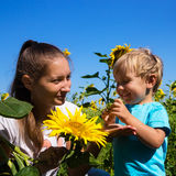 Mother and son outdoors among sunflowers Stock Photography