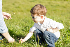 Mother and son picking flowers in a field royalty free stock photos