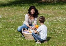 Mother and son at picnic Royalty Free Stock Photos
