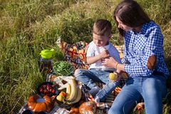 Mother and son at a picnic outdoors eating holiday. Mother and son at a picnic outdoors eating royalty free stock image