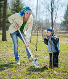 Mother and son  planting  tree Stock Image