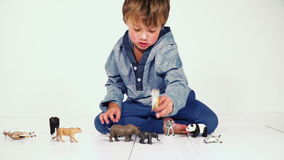 Mother and son playing together with different plastic toy animals stock footage