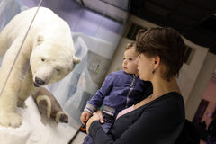 Mother with son and polar bear Royalty Free Stock Photo