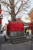 Mother and son pray in the wishing tree. Jiangsu Yangzhou Dong Guan Street has a wish tree, a pair of mother and son are wishing to pray under the tree Royalty Free Stock Photos
